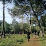 Terapija prirodom - kako nam priroda može pomoći u očuvanju zdravlja i pronalaženju unutarnjeg mira